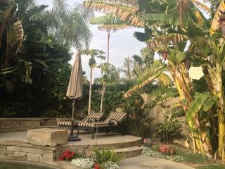 Härlig trädgård med banan-, papaya- och citrusträd