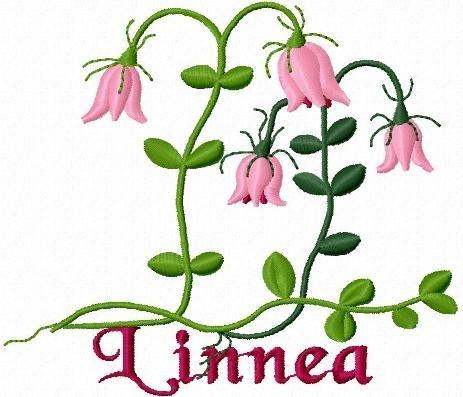 grattis på din namnsdag Grattis på din första namnsdag Linnéa! | OC living by: Sara grattis på din namnsdag